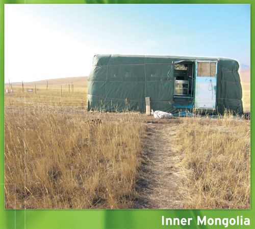 Greenhouse GC in Mongolia